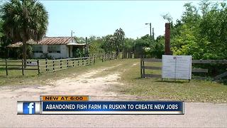 Abandoned fish farm to be torn down, jobs created - Video
