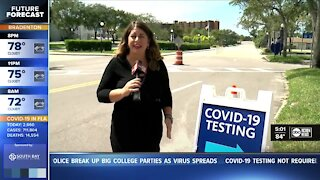 Rapid COVID-19 tests becoming popular, but are they as accurate?