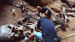 Giant Human Skeleton found at Khao Khanap Nam Cave