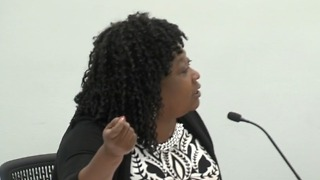 Councilwoman Lynne Hubbard said she went to give opinion during secret meeting - Video