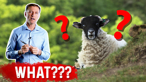 Vitamin D Comes From Sheep's Wool: WHAT???