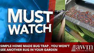 Simple Home Made Bug Trap , you won't see another bug in your garden - Video