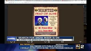 Search for Snow Miser in Frederick - Video