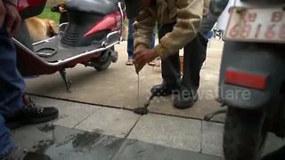 Fisherman makes catch from drainage hole on cement ground