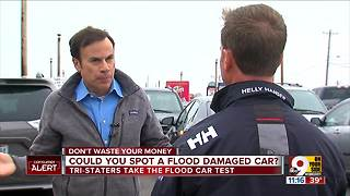 Could you spot a flood-damaged car from Houston? - Video