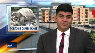 Stolen tortoise returned to Menominee Park Zoo - Video
