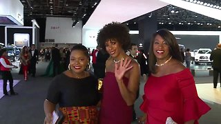 2019 red carpet Charity Preview - Video