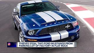 Thieves steal two Ford Mustangs from parking lot of factory in Flat Rock - Video