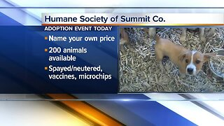 Humane Society of Summit County hosting adoption event