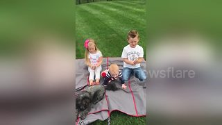 Girl is really upset about new brother news - Video