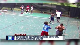 Neighbors in Palmer Woods cry foul over basketball court - Video