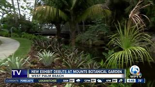 Mounts Botanical Garden opens 'Windows on the Floating World' - Video
