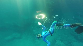 Spinning around: Watch a jellyfish latch onto a bubble ring blown by a diver