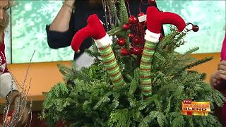 Creating Beautiful Outdoor Winter Decoration - Video