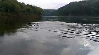 Fisherman captures an elk crossing river - Video