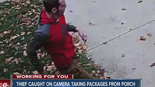 Thief caught on camera taking packages from porch - Video