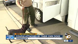 Elderly couple attacked by their dogs
