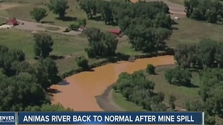 Animas River back to normal after mine spill - Video