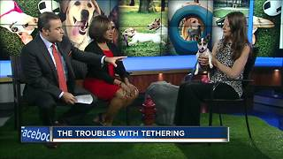 Ask the Expert: Troubles with tethering - Video