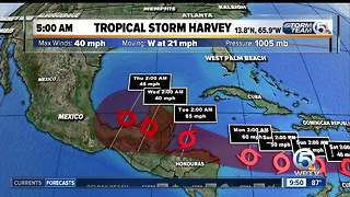 Tropical Storm Harvey update 8/19/17 - 9am report - Video