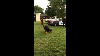Breakdancing Cop Busts a Move - Video