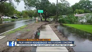Flooding frustrating neighbors in Palm Harbor - Video