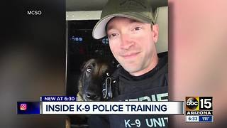 ABC15 gets an inside look at what goes into K-9 police training - Video