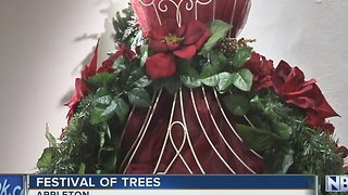 Festival of Trees - Video