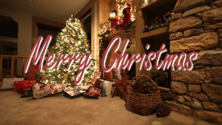 Merry Christmas Greeting Card #1