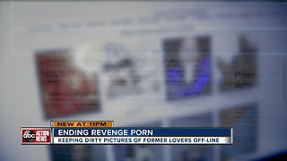 Florida's Revenge Porn Law, is it working? |WFTS Investigative Report - Video