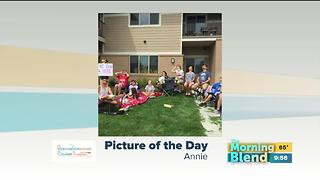 Friday's Picture of the Day - Video