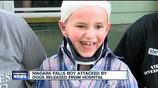 Young boy attacked by dogs released from the hospital - Video