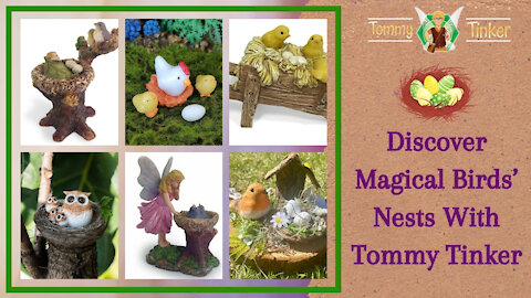 Tommy Tinker | Discover Magical Birds' Nests With Tommy Tinker | Teelie's Fairy Garden