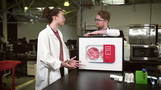 The Future of Lab-Grown Meat - Video