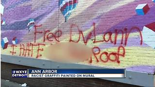Racist graffiti painted on mural in Ann Arbor - Video