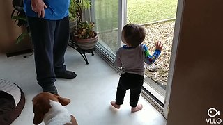Toddler loves to call for his dog to come inside