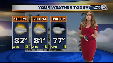 South Florida Thursday afternoon forecast (4/25/19)