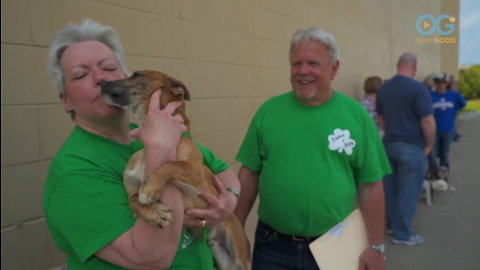 Adorable Rescued Dogs Meet Their New Families (A Dog's Journey Home E5)