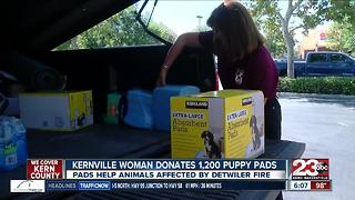 Kernville woman donates to Detwiler Fire shelter animals - Video