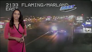 Pedestrian crash near Flamingo/Maryland