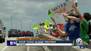 Residents protest toxic algae in Stuart - Video