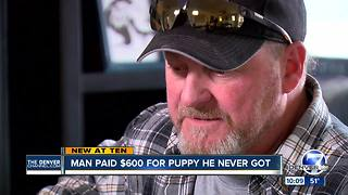 Colorado family scammed by dog 'breeder' in Texas shares story - Video