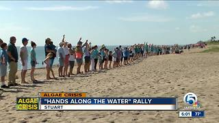 'Hands Along the Water' rally held in 30 spots around Florida