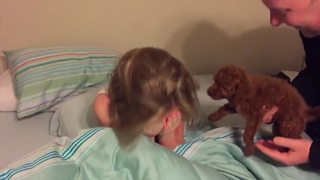 Kids Surprised with New Puppy | 15 Funniest Reactions - Video