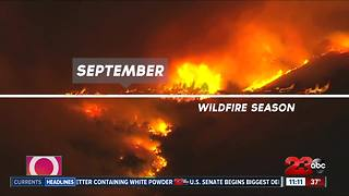 Take a look back to our weather from 2017 - Video