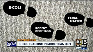 Wearing shoes in the house may track in more than you think - Video