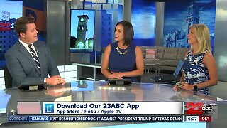 23ABC News at 6 pm: July 17, 2019
