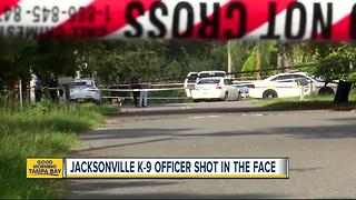 Florida officer shot in the face, suspect killed in shootout - Video