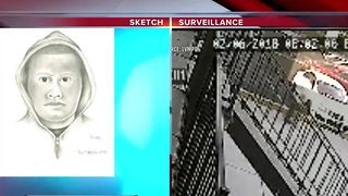 Sketch released of man accused of trying to kidnap girls - Video