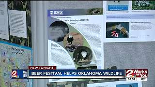Beer Festival Helps Oklahoma Wildlife